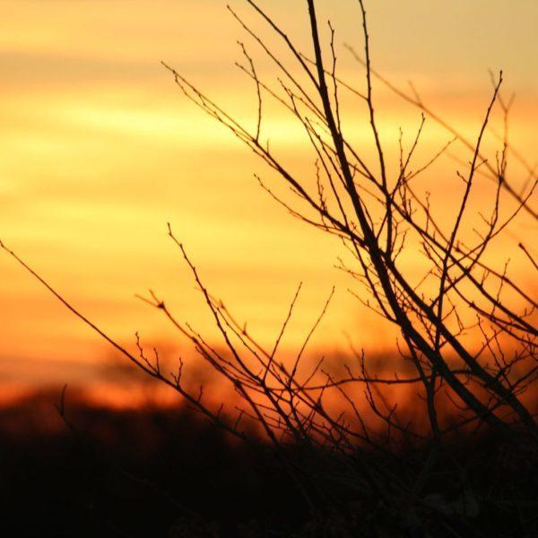 Goring-Sunset
