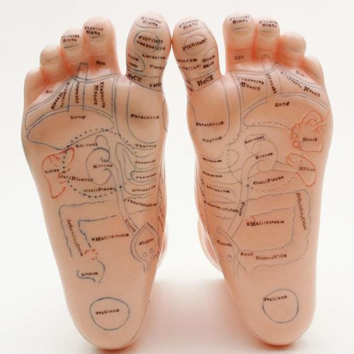 reflexology-image-both-feet